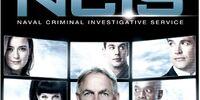 Season 10 (NCIS)