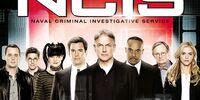 Season 11 (NCIS)