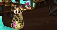Seahorse-The Seahorse Roundup12