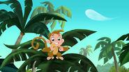Monkey-Invisible Jake05