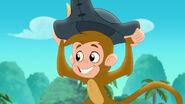 Monkey01