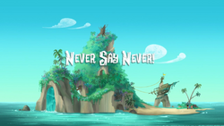 Never Say Never!titlecard