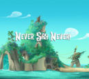 Never Say Never!/Transcript