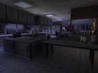 Embassy kitchen (Agent Under Fire)