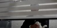 Blofeld (classic film continuity)