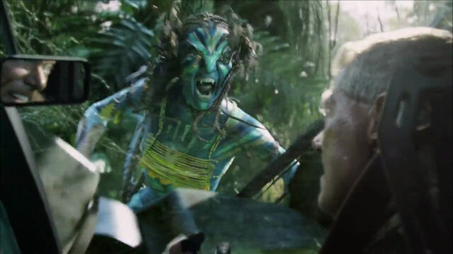 File:Neytiri fights quaritch 2.jpg
