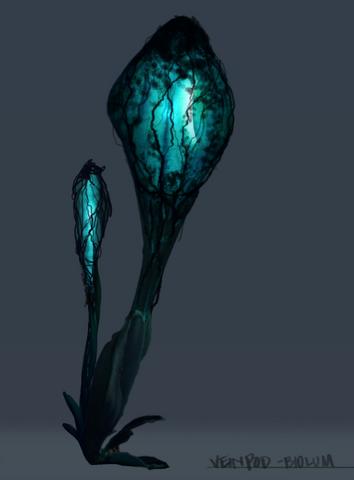 File:Veinpod Bioluminescence.png