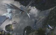 Aerial fight ToS