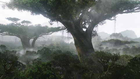 File:Avatar Pandora trees.jpg