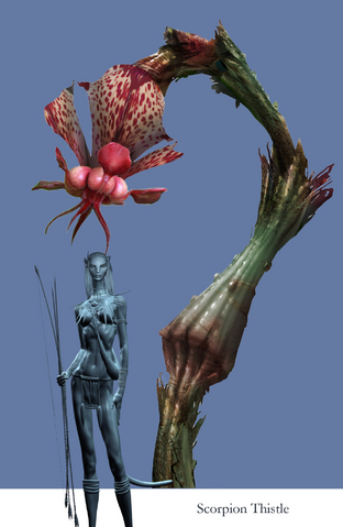 File:Scorpion Thistle.png