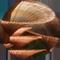 File:MainBanner-Flora.png