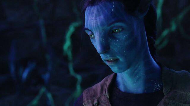 File:Avatar-avatar-12306017-1280-720.jpg