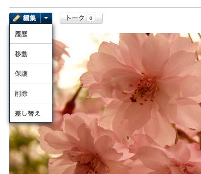 ファイル:Delete a photo.png