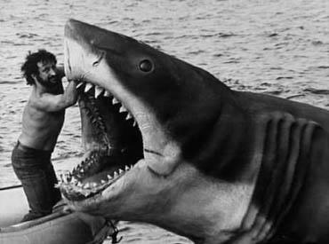 File:Jaws-bruce.jpg