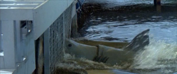 File:Jaws-3d-1.png