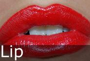 Lip caption