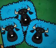 3-EyedBlueSheeps