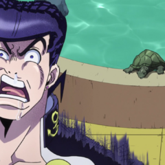 Terrified by a turtle.