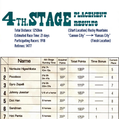 Results of the Fourth Stage