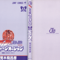 The cover of Volume 13 without the dust jacket