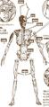 Thumbnail for version as of 12:49, November 27, 2015