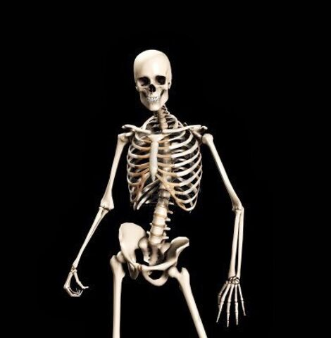 File:Spooky Skeleton.jpg