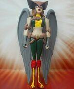 Hawkgirl 05