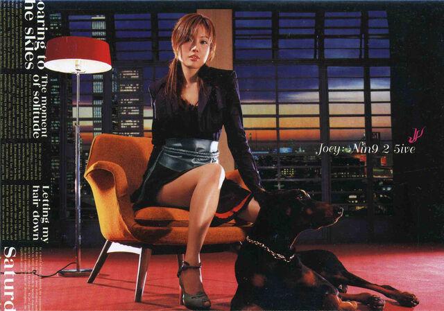 File:Joey 9ine25ive 2nd Ed Front.jpg