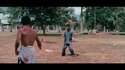 Bruce Lee - Best Fighting Scenes Ever Vol