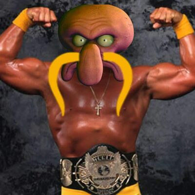 Skod Hogan