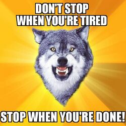 Courage Wolf Don't Stop When You're Tired