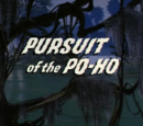 Pursuit of the Po-Ho