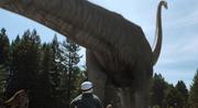 Mamenchisaurus Muerta