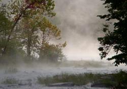 FoggyRiver