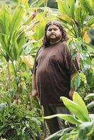 Nedry Jungle