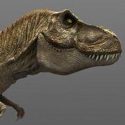 Female t-rex jp4 t99
