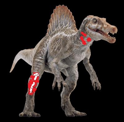 File:Wounded spino t99.jpg