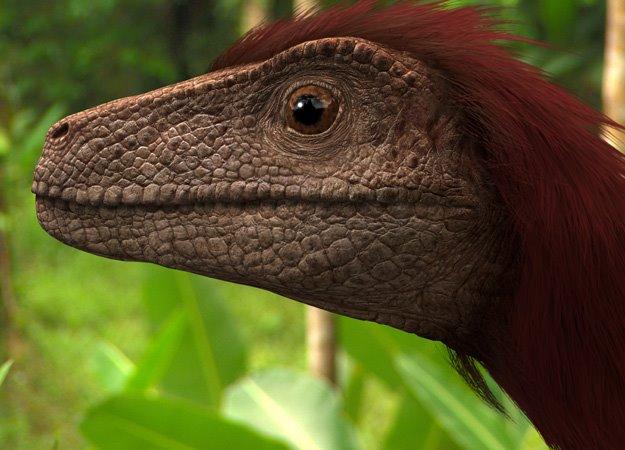 File:Pyroraptor.jpg