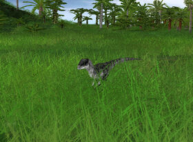 Femaledeinonychus