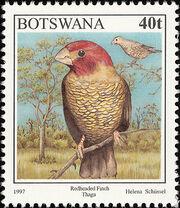 Botswana 1997 Birds f