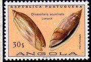 Angola 1974 Sea Shells q