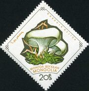 Mongolia 1964 Mushrooms d