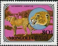 Mongolia 1979 Wild Cats f