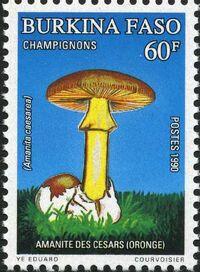 Burkina Faso 1990 Mushrooms c