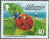 Alderney 2014 Alderney Ladybirds a