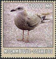 Mozambique 2002 The World of the Sea - Sea Birds 3 f