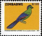 Zimbabwe 2007 Birds from Zimbabwe e