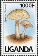 Uganda 1991 Mushrooms of Uganda h