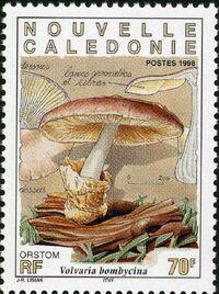 New Caledonia 1998 Mushrooms b