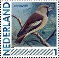 Netherlands 2011 Birds in Netherlands a2.jpg